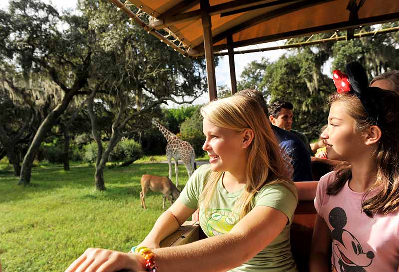 Disney's Animal Kingdom® Theme Park
